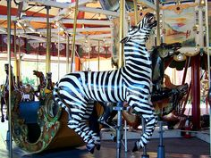 Carousel Zebra    The Herschell-Spillman carousel at Greenfield Village was built in 1913.  Photo by Maia C