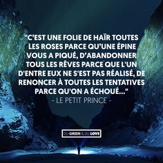 Quotes and Motivation QUOTATION – Image : As the quote says – Description Citation inspirante, c'est une folie… le petit prince Sharing is love, sharing is everything Some Quotes, Best Quotes, Funny Quotes, Petit Prince Quotes, Motivational Quotes, Inspirational Quotes, Quote Citation, French Words, Literary Quotes