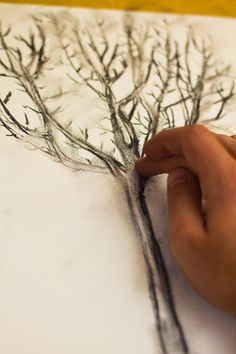 Teaching Kids How To Draw From Life: How To Draw A Tree