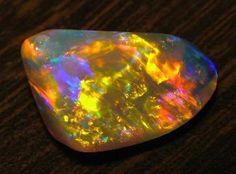 Andamooka Opal - News & Events - Dealer of the finest crystal opal, Andamooka-matrix, jewellery, fossils & specimens
