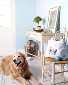 Picture Tote Bag - Cute idea, make one for each kid with their picture on it or for each pet