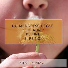 Nu-mi doresc decat doua lucruri: pe tine si pe noi www.atlasdenunta.ro  #truelove My Love Poems, Movies, Movie Posters, Films, Film Poster, Cinema, Movie, Film, Movie Quotes
