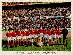 Benfica 1963-64