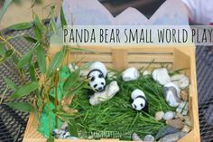 Panda Bear Small World Imaginative Play - The Imagination Tree.  A is obsessed with pandas, so I think she will love this.