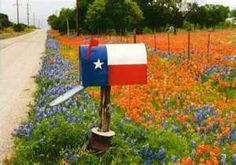 Texas Flag mailbox on Texas country road with Texas wildflowers...can't beat it!  Maybe a Tennessee one when I live in Tennessee :)