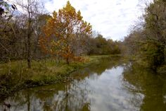 Quiet Fall day, Oxley Nature Center, 2014