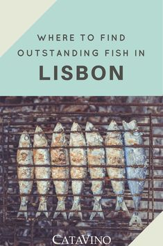 Where to eat the best fish when visiting Lisbon!