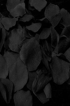 Zwart, zwart, zwart....