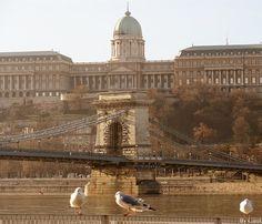 Enjoy Budapest!