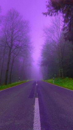 Down the purple road