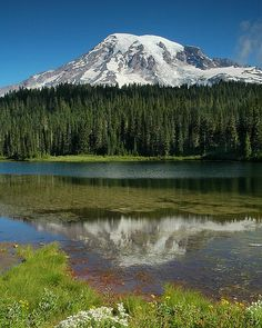 Mount Rainier | WA