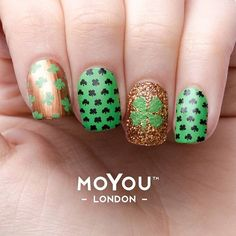 Are you guys already thinking of ideas for next month St. Patrick's Day?! We are! *-Festive Plate # 21 - Shamrock Stamping Nail Polish - Harvest Glitters -* #myl #moyoulondon #stpatrick #shamrock