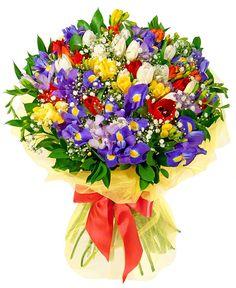 Buchete de flori - Buchet de irisi, frezii si lalele Indian Gods, Rainbow Colors, All The Colors, Iris, Flower Arrangements, Beautiful Flowers, Cactus, Floral Wreath, Birthdays