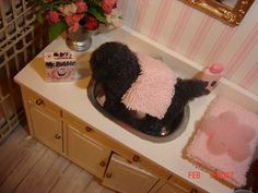 poodle in the bath | Flickr - Photo Sharing!