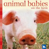 Crías de animales de la granja. Libro de fotografías con texto en inglés de   . Publicado por Kingfisher. *En nuestra biblioteca.