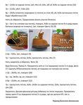 Мобильный LiveInternet Ида.   Elena250309 - Дневник Elena250309   Amigurumi Doll, Crochet Doll Pattern, Free Pattern, Orange, Pictures