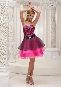 Hot Pink and Black Graduation Cocktail Dress For 2013 Zebra and