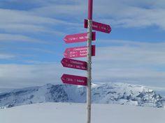 Snowshoe hiking in Dreibundenstein, Chur Snowshoe, Chur, Alps, Hiking, Walks, Trekking, Hill Walking