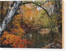 In Dreams Of Autumn Wood Print by Kay Novy. All wood prints are professionally printed, packaged, and shipped within 3 - 4 business days and delivered ready-to-hang on your wall. Choose from multiple sizes and mounting options.