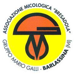 Associazione Micologica Bresadola – Barlassina