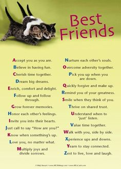 Life Quotes : Best Friend Quotes and Sayings for Girls - Bing Images. - About Quotes : Thoughts for the Day & Inspirational Words of Wisdom Best Friendship Quotes, Bff Quotes, Famous Quotes, Funny Quotes, Small Quotes, Happy Friendship, Friend Friendship, Sweet Quotes, Nice Quotes