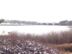 Frozen Lake Park after snow. Ilsan Goyang-si Gyeonggi-do Korea. 눈 온 직후 얼어붙은 일산 호수공원.