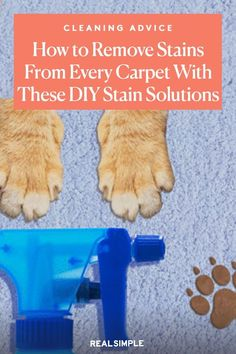 The Easiest Way to Remove Stains From Every Kind of Carpet   Lighten and get rid of any stain left on your carpet with one of these homemade carpet cleaning solutions for virtually any mess—and the best part is, they don't require special store-bought sprays or solvents. With just a few ingredients, you can DIY your own carpet cleaner to tackle any stain. #cleaningtips #cleanhouse #realsimple #stepbystepcleaning #cleaninghacks #cleaningguide Cleaning Solutions, Cleaning Hacks, Remove Stains, Sprays, Carpet, Homemade, Store, Home Made