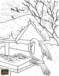 FarmTime in the Classroom #coloring page #bird #snow #education #teachers FarmTimeClassroom.com