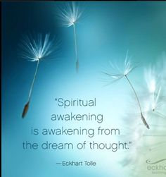 Spiritual awakening is awakening from the  dream of thought. ~ Eckhart Tolle