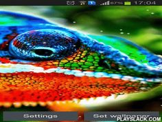 Chameleon  Android App - playslack.com , Chameleon - astonishing people on the screen of your smartphone or tablet. Enjoy a special glamour of this kind of saurians. The app has power saving mode.