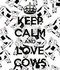 KEEP CALM AND LOVE COWS...i ♥️ this because one of the first little presents austin got me was a little stuffed cow because of a joke from high school and then i got him one, and both our babies have a little stuffed cow, it's kind of become our thing :)