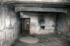 There were many forms of torture that were used on the Jews at Auschwitz. The most common form of torture was the use of gas chambers. The Nazis would put Jewish people in a room, which was called a gas chamber as shown in the picture, and spray poisonous gas within the room to kill the Jewish people.  http://furtherglory.files.wordpress.com/2012/07/gaschamberbackwall.jpg#