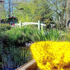 Au jardin. In the garden. #crochet #crocheting #crochetaddict #instacrochet #knitting #knit #crochetlove #igcreative #igcrochet #becreative #crochetersofinstagram #colors #couleurs #plantes #plants #green #vert #fromwhereiknit #garden #jardin #paradis #paradise #normandie #normandy #fb76 #seinemaritime #shareyourknits by jellafaitdestrucs