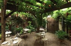 Antique trellis covered in flowering climber, hanging ferns, along with herbs such as mint, thyme, rosemary, lemon balm and basil. Hanging lights provide a whimsical firefly effect.
