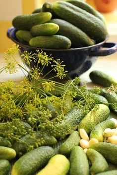 Cool Breeze cucumbers ready for never fail easy dill pickles. Magic method for never-fail, easy dill pickles. Canning Dill Pickles, Pickled Beets Recipe, Best Pickles, Homemade Apple Butter, Canning Vegetables, Best Weight Loss Foods, Homemade Pickles, Pickle Jars, Home Canning