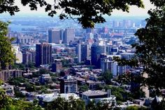 ten things to do in montreal