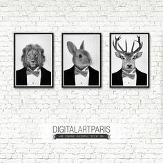 Lot de 3 affiches animaux noir et blanc portrait lion lapin cerf format a4