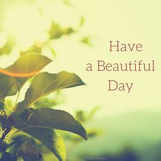 18 Good Morning Cards to Brighten your Timeline | Birthday Wishes Expert