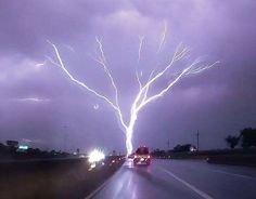 Tree of Light-ning. Upward Moving lightning. Photo by ©Mike Theiss.