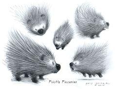 Prickly Porcupine