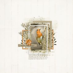 Robin. Layout by KarenB. Using Hester digital scrapbooking kit from Lynne Grieveson Designs. Available at The Lily pad at 21% discount!