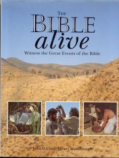 Providing over 100 major Bible stories retold with computer-generated photographic illustrations taken on location in the Holy Land - with historical . Jerusalem Bible, International Bible, Story Retell, Bible Text, Old And New Testament, Every Day Book, Book Summaries, Best Selling Books, Bible Stories