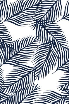 Cass Deller Foliage 8.jpg