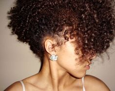 Click the image for Anjanae's natural hair photos and regimen