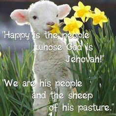 We are his sheep of his pasture.