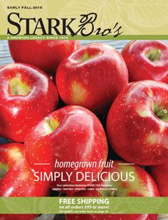 Stark Bro S Catalog Garden Catalogs Orchards Le Tree Nurseries Baby Rooms
