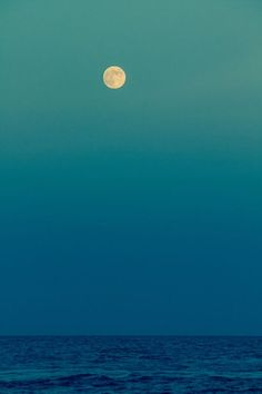 Sea the moon?