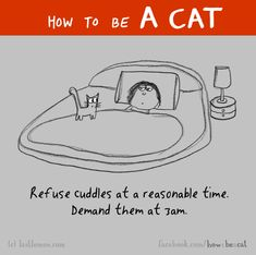 Welcome to the web's first user-driven guide on HOW TO BE A CAT. Submit your own ideas here, and if we like them, we'll add them to our Facebook page. If you're not on Facebook, archived images are here.