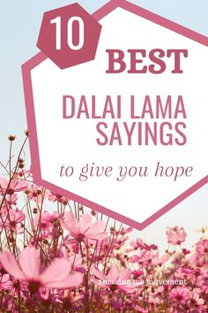 10 Dalai Lama sayings and quotes to give you hope. Here are some of the best Dalai Lama kindness quotes, Dalai Lama compassion quotes, Dalai Lama quotes on peace and Dalai Lama quotes on love. Happy Quotes, Love Quotes, Inspirational Quotes, Deep Quotes, Compassion Quotes, Kindness Quotes, Best Advice Quotes, Good Advice, Positive Life