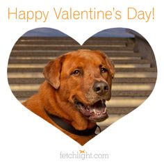valentine's day san diego ca
